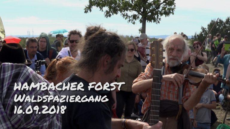 Hambacher_Forst_Demo_20180916 (2)