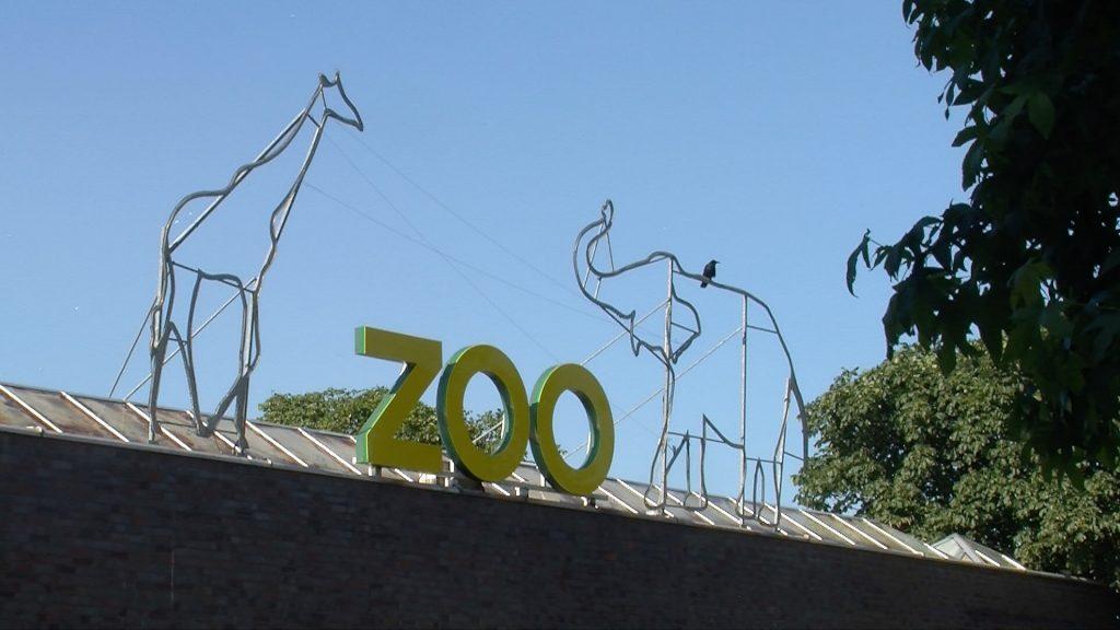 Köln-Riehl entdecken #03 Zoo
